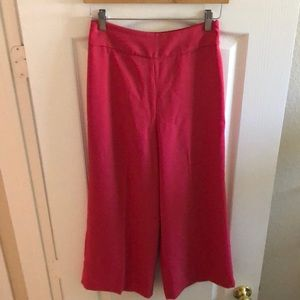 Express High Waisted Cropped Culotte Pant